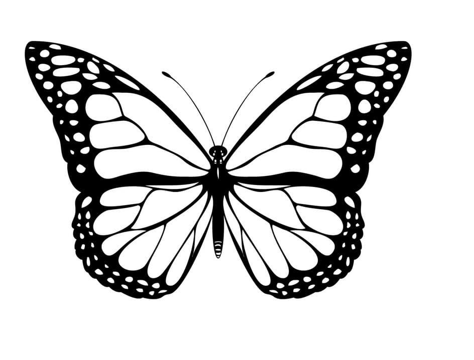 skabelon sommerfugl