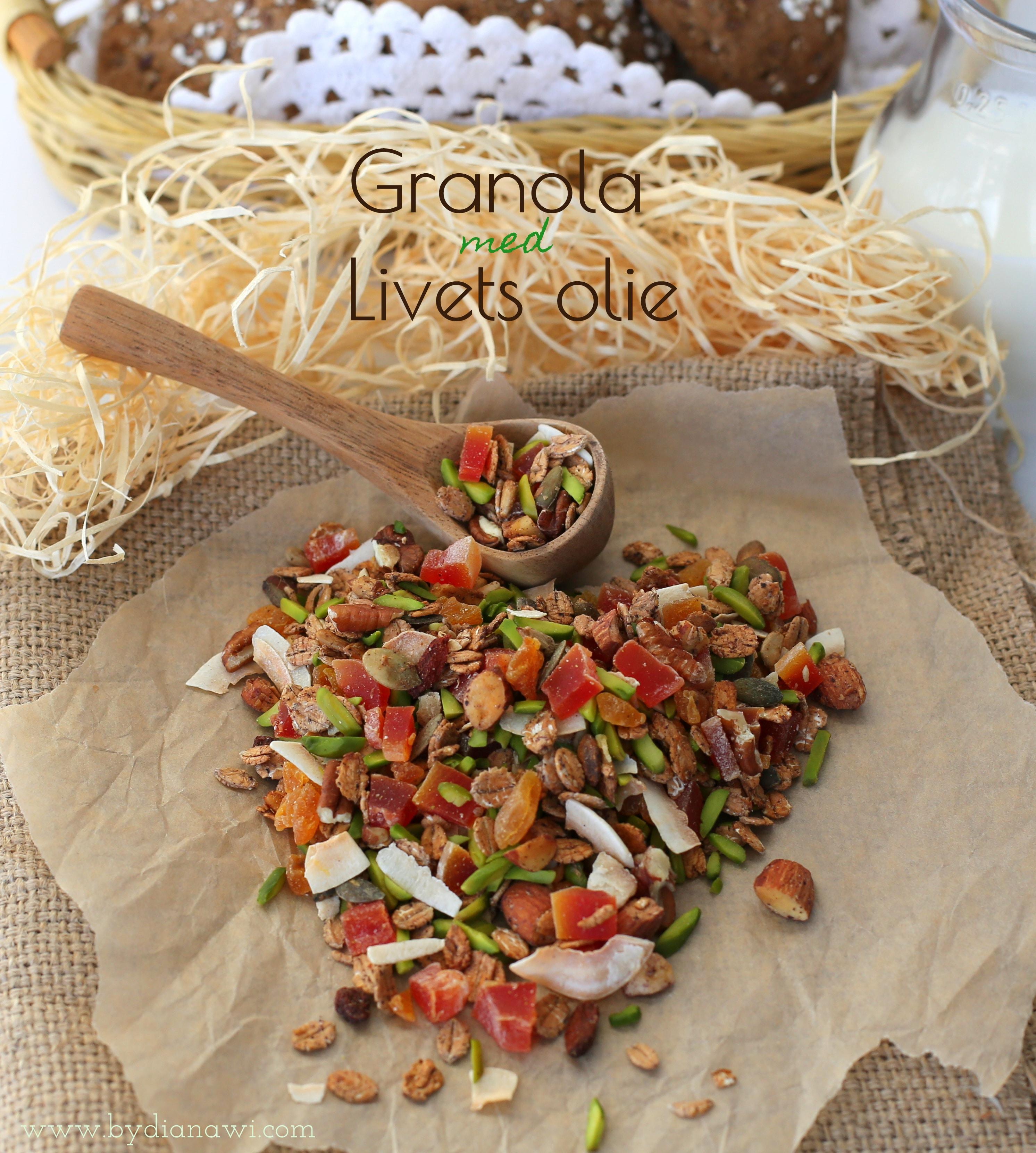 hjemmelavet granola opskrift, livets olie, oil of life
