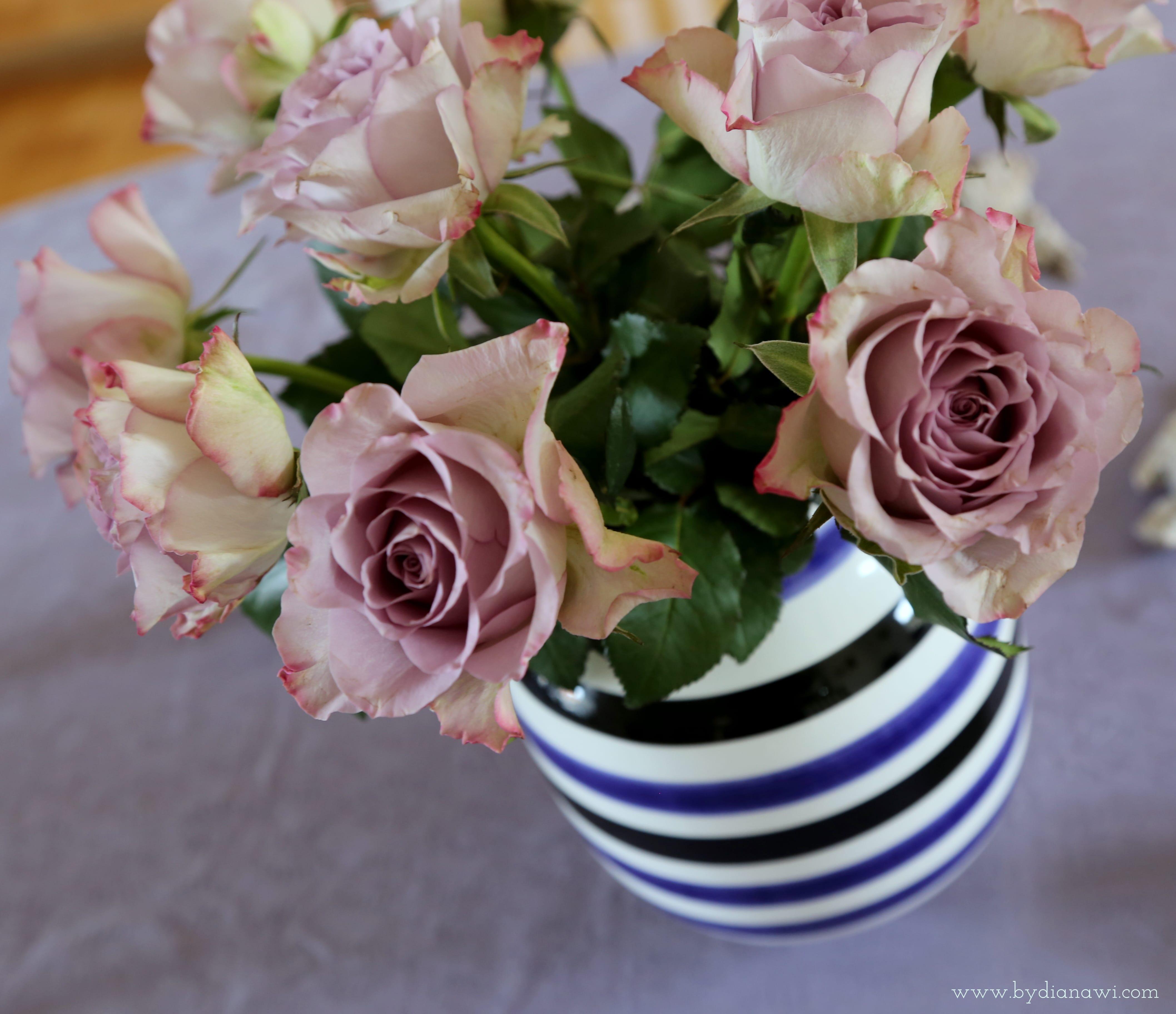 hverdagsglimt roser