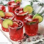 Frisk tranebær Margaritas drink med ingefær-vanilje sirup