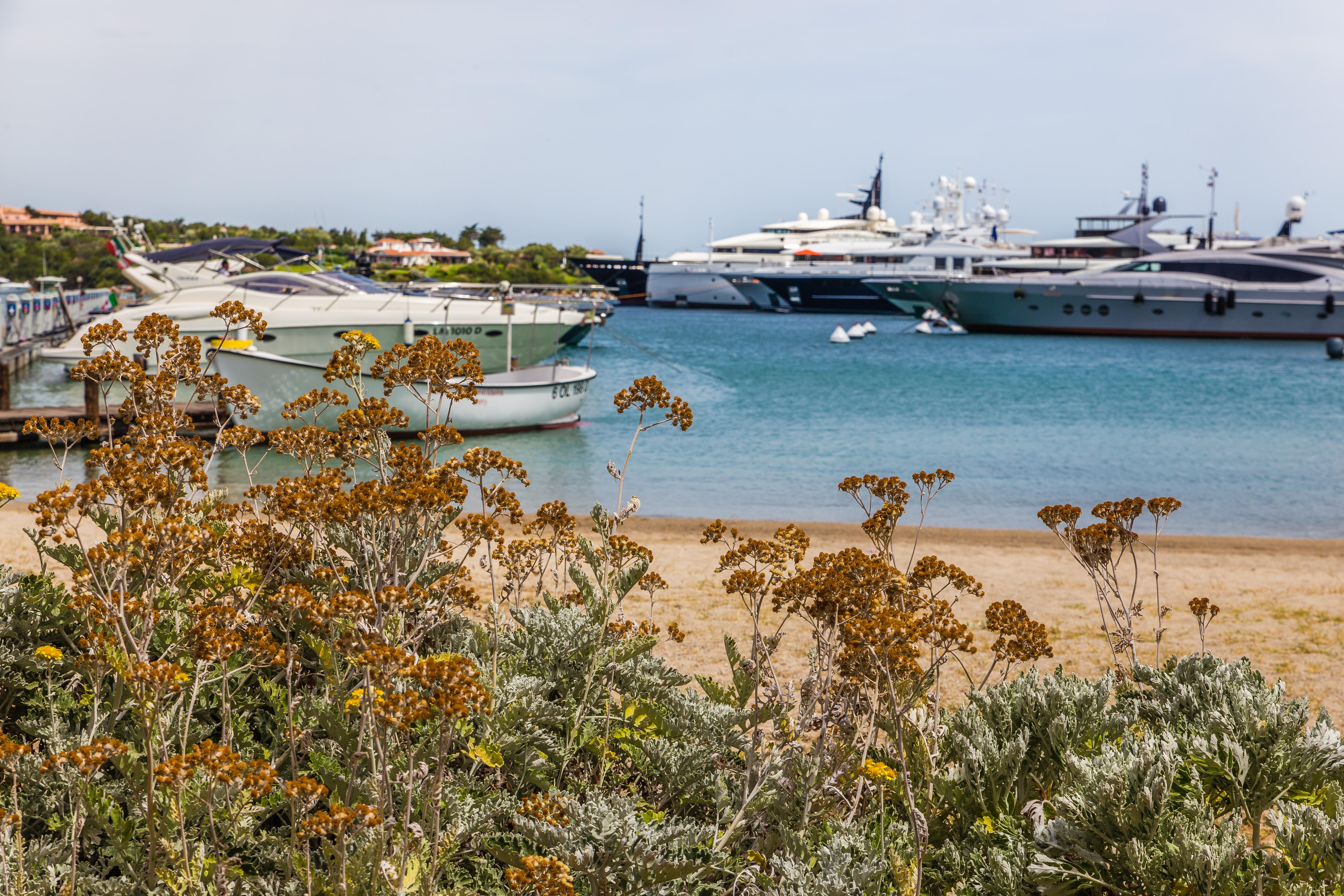 porto cervo marina, sardinien sommerferie