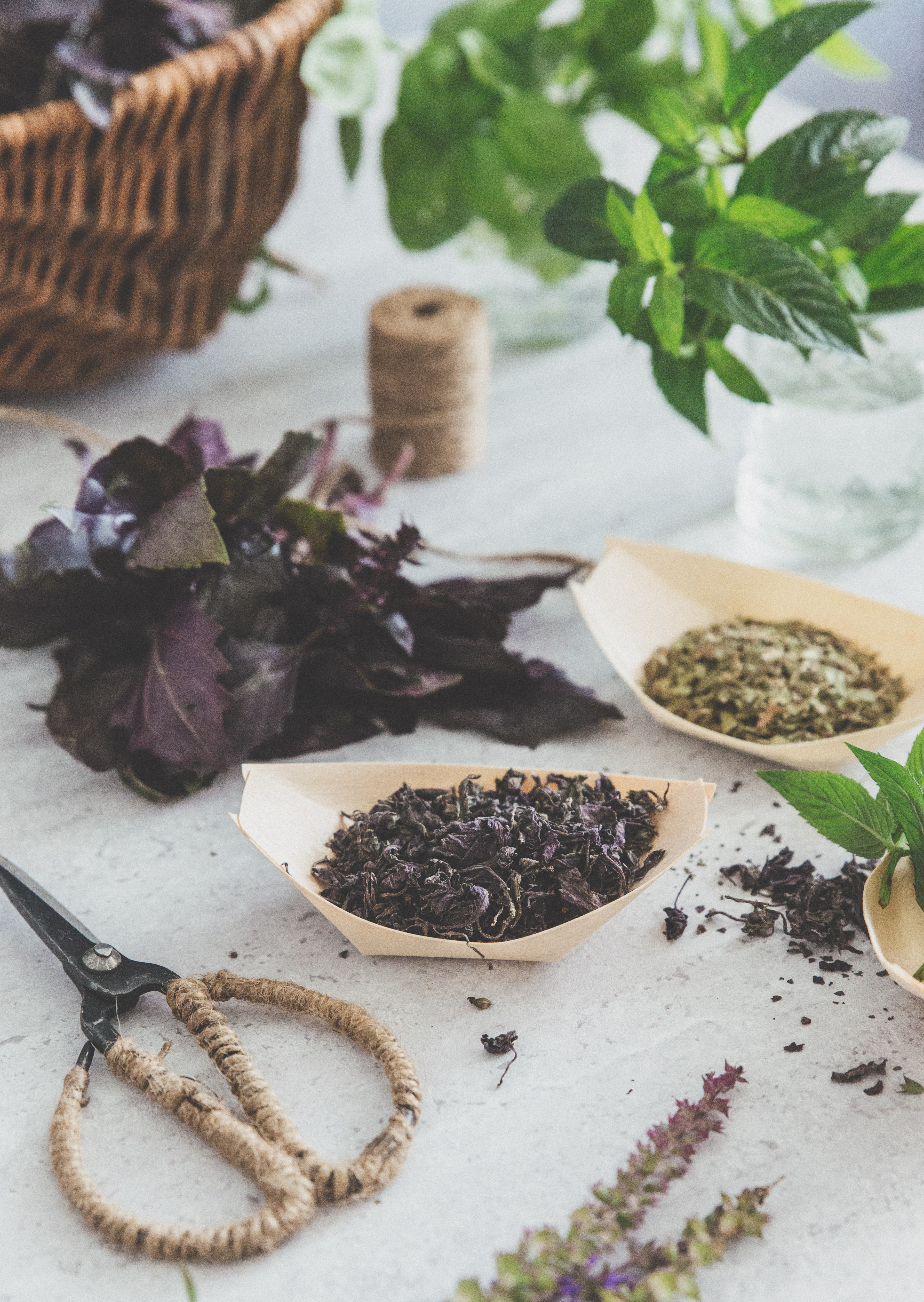 tørre krydderurter, basilikum, estragon, mynte