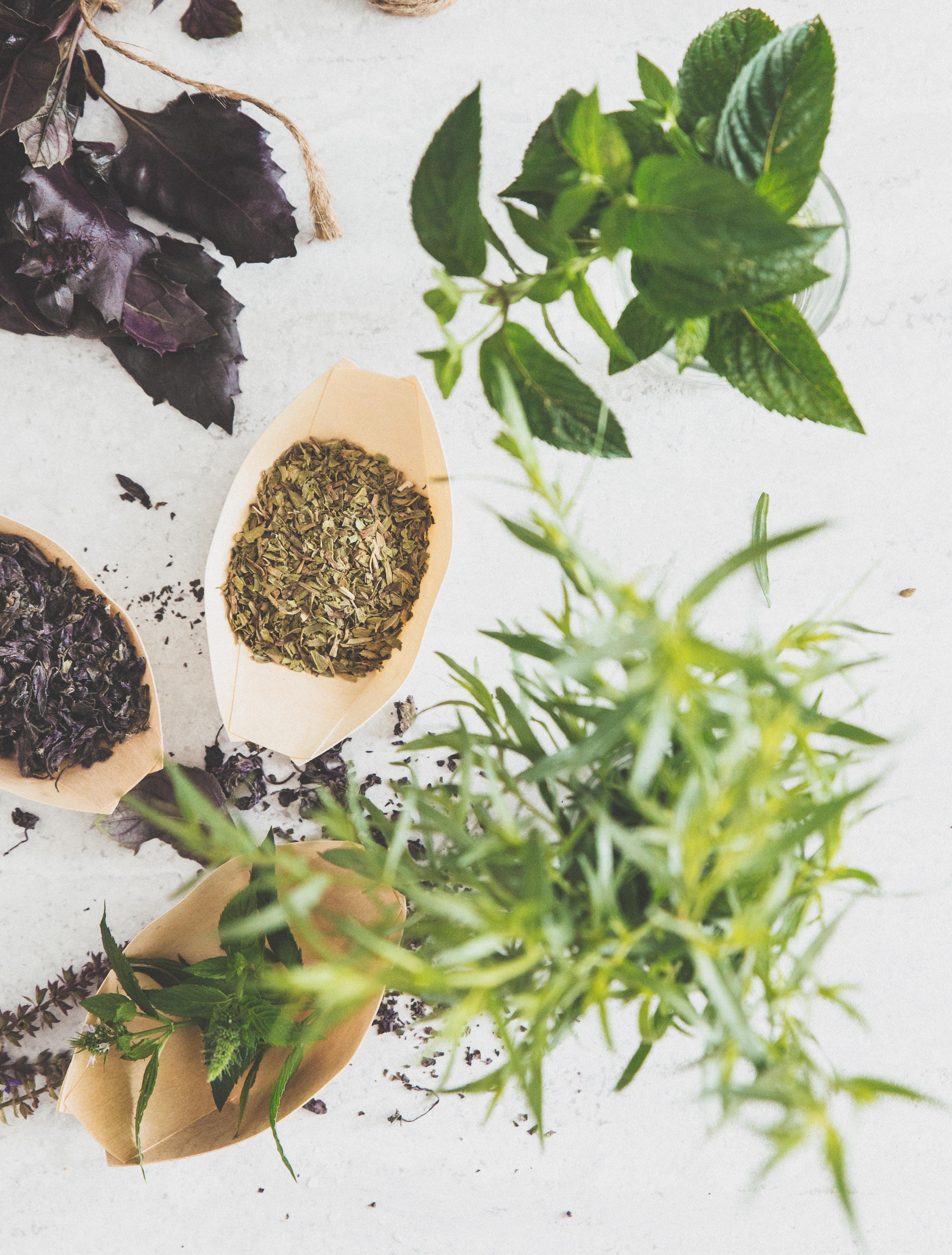 estragon, basilikum, mynte, tørre krydderurter