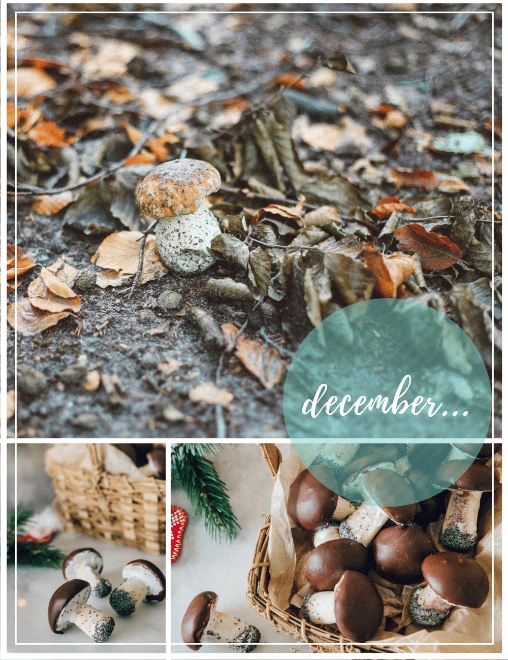 svampe småkager, champignon cookies, hjemmebag, familieprojekt