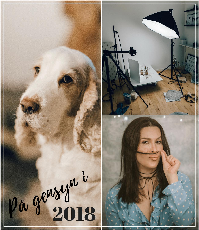 2017 året der gik, planer og tanker for 2018, hello 2018