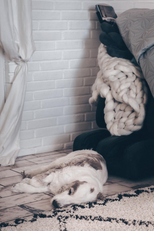 10 tips til bedre nattesøvn, sommervarme, hedebølge
